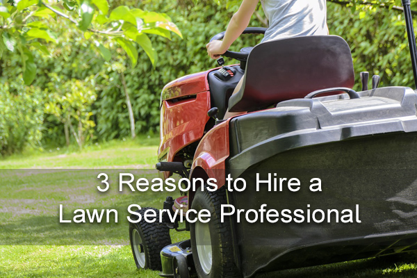 3-reasons-to-hire-a-lawn-care-pro