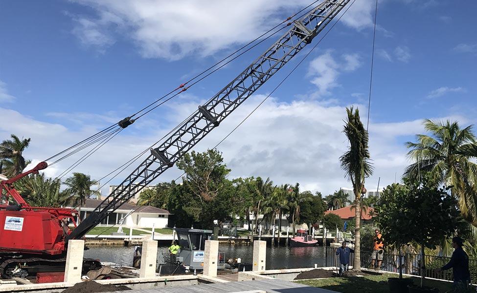 Landscape design installation South Florida