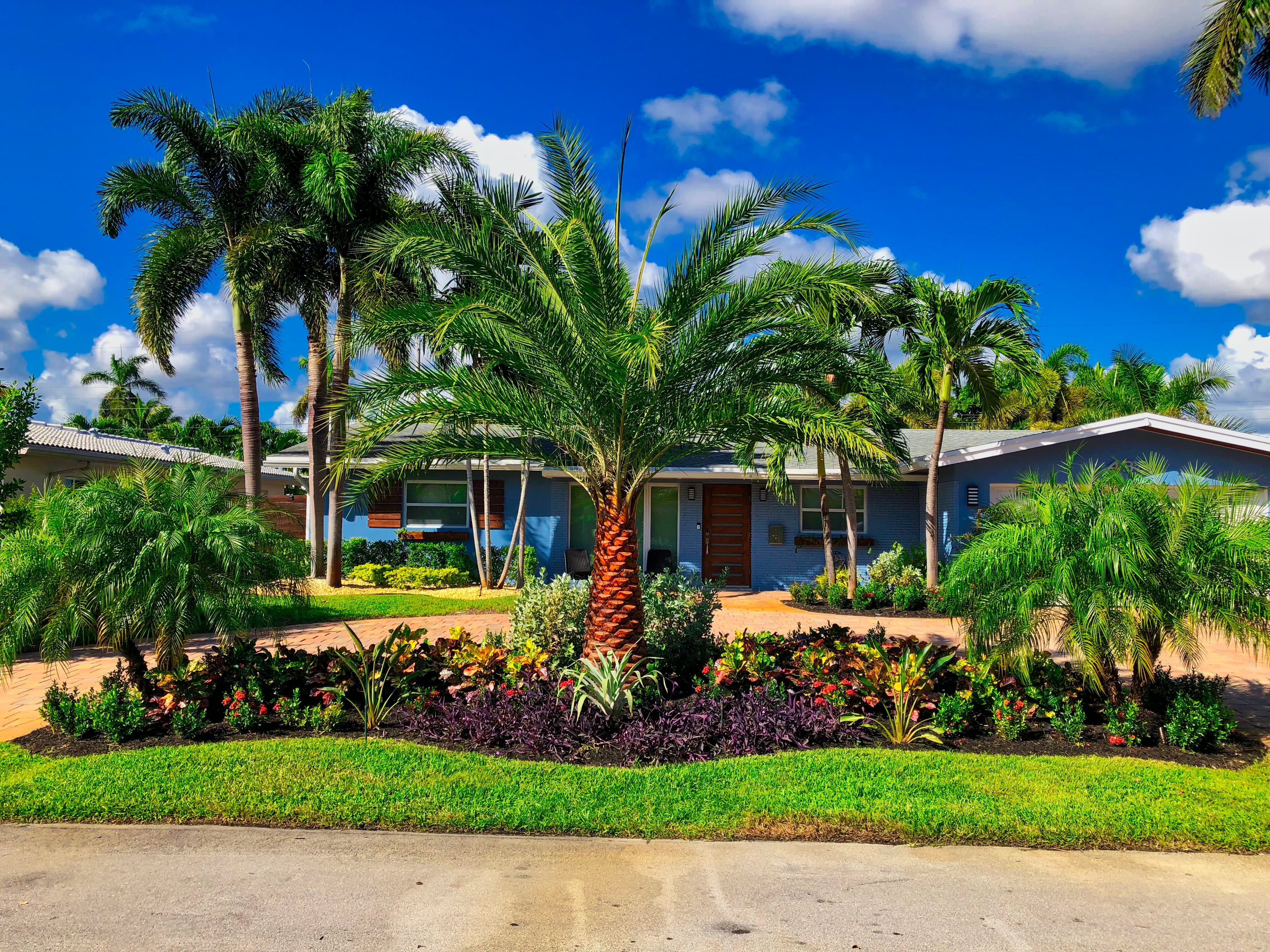 Best Commercial Landscaping Company In Parkland Fl Pink