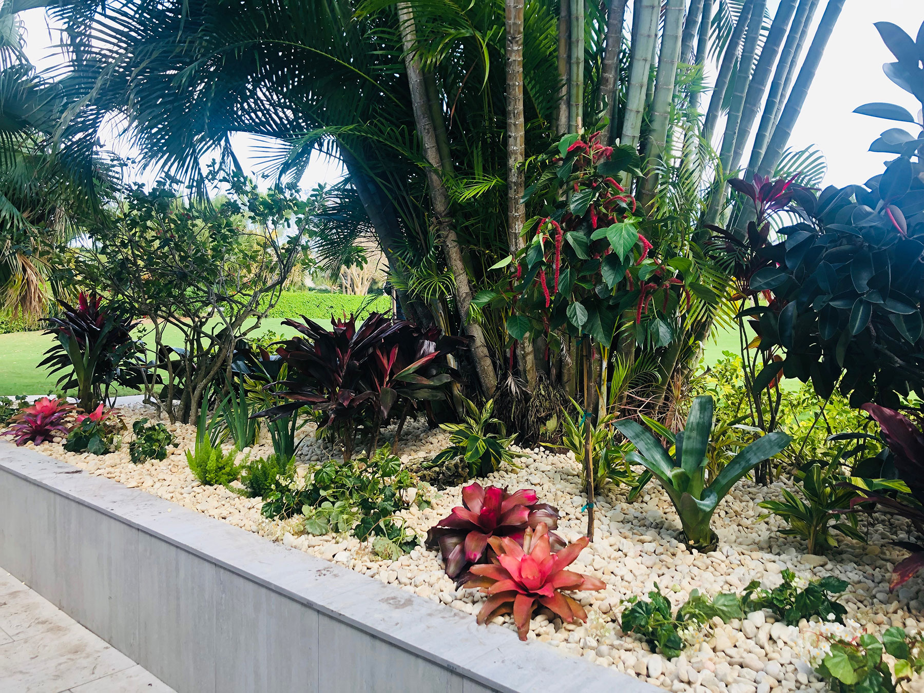 Pink And Green Residential Landscaping Company